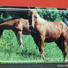 Postales: POSTAL PIRINEOS CABALLOS KOLORHAM SIN USAR . Lote 191233073