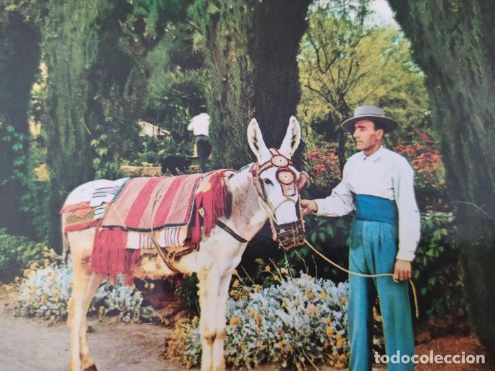 Postales: Postales de escenas, paisajes y personajes de España - Foto 7 - 220066870