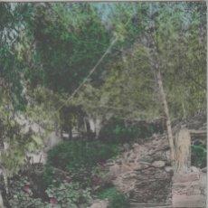 Cartoline: LOTE A-POSTAL HOSTAL FISAS CORBERA DE LLOBREGAT BARCELONA AÑOS 50. Lote 264963299