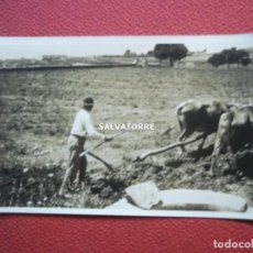 Postales: POSTAL ANTIGUA. POST CARD.CAMPO PLANTANDO CEBOLLAS.SANTA CRUZ DE TENERIFE.1922. Lote 269970538