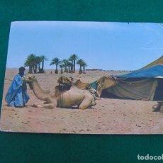 Postales: POSTAL DEL SAHARA ESPAÑOL. (PARADA EN UNA JAIMA) FOTO EN COLOR. ESCRITA.. Lote 271157373