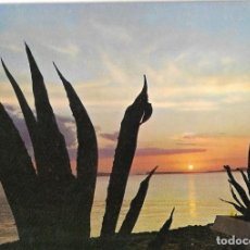 Postales: POSTAL PUESTA DE SOL REF. 1281 EDITORIAL SAVIR AÑO 1971*. Lote 277521528