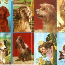 Postales: 8 POSTALES DE LA COLECCIÓN CYZ, SERIE ANIMALES, NUEVAS. Lote 17296588