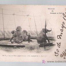 Postales: SOUVENIR DE BARNUM ET BAILEY. LES ARTISTES GIGANTESQUES.FRANQUEADO Y FECHADO EN IRÚN 1902.. Lote 20945346