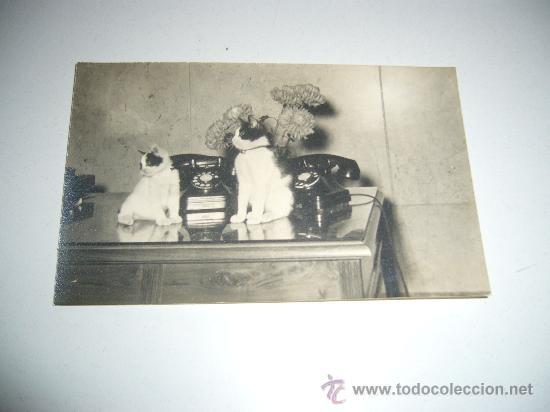 POSTAL FOTOGRAFICA TELEFONICA NACIONAL DE ESPAÑA VALENCIA RIADA 1957 RARO DOCUMENTO (Postales - Postales Temáticas - Especiales)