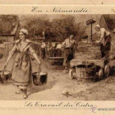 Postales: LA SIDRA RARA POSTAL ILUSTRACION NORMANDIA. Lote 44065671