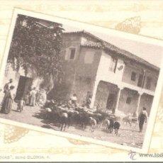 Postales: POSTAL COLECCION CANOVAS SERIE GLORIA NUM. 8 - RECOGIDA DE GANADO- FOT HAUSER EXCELENTE POSTAL. Lote 45582226