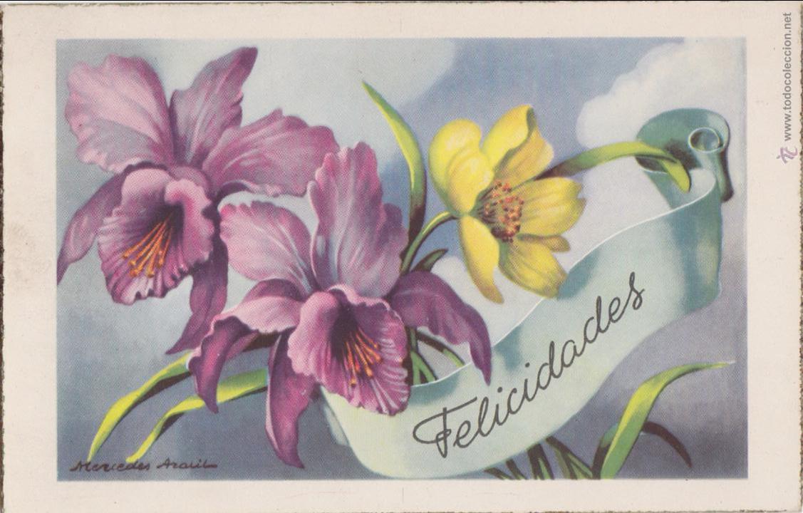 P- 1447. POSTAL DIBUJADA FELICIDADES C. Y Z. M Nº 543. (Postales - Postales Temáticas - Especiales)