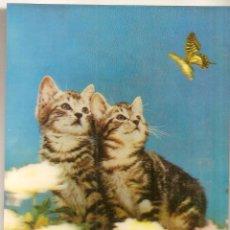 Cartes Postales: TARJETA DE GATOS EN 3 DIMENSIONES. Lote 54162692