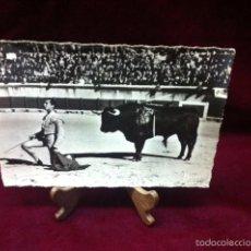 Postales: CORRIDA DE TOROS LUIS MIGUEL DOMINGUIN. Lote 57071248
