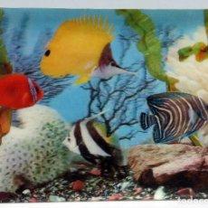 Postales: POSTAL TRIDIMENSIONAL 3D PECES COLORES FONDO MARINO AÑOS 70 ESCRITA. Lote 73933771
