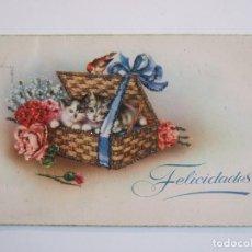 Postales: POSTAL FLORES - FELICIDADES - C Y Z 599 - ILUSTRADO POR C. VIVES - ESCRITA 1953 SIN CIRCULAR - . Lote 78262337