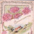 Postales: POSTAL EN RELIEVE - CONGRATULATIONS - PAISAJE - FLORES -804. Lote 96873887