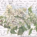 Postales: POSTAL LILAS BLANC 529 - RAMILLETE DE FLORES - COLOR PARIS. Lote 100996947