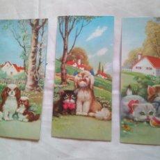 Postales: 3 TARJETA DESPLEGABLE TROQUELADA PERROS GATOS FLORES -RAKER EDITIONS UNIVERS 831/ 1 2 Y 3. Lote 119628455