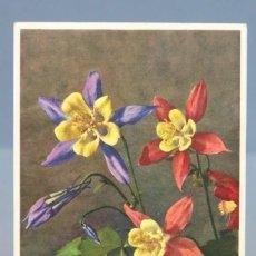Postales: POSTAL. AQUILEGIA CALIFORNICA HYBRIDA. SUIZA. FLORES. 2957. Lote 155989538