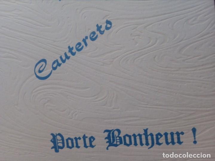 Postales: POSTAL SIN CIRCULAR AUTÉNTICA FLOR DE NIEVE (EDELWEIS) CAUTERETS - PIRINEO (AÑOS 70) - REF: 189/199 - Foto 3 - 217407672