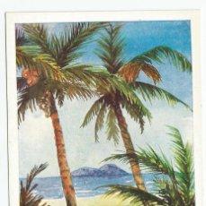 Postales: 2 POSTALES DE LA EDITORIAL ARTIS-MUTI PINTADOS CON LA BOCA EN 1960- PUERTO PESQUERO Y PALMERAS. Lote 170878490