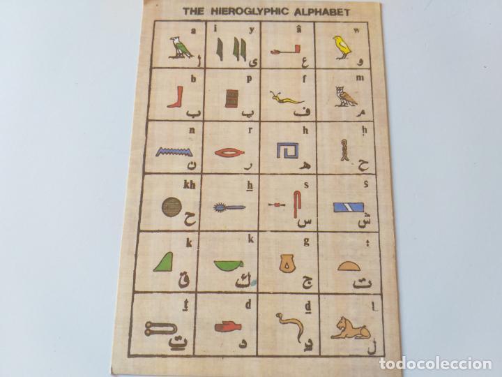 POSTAL DEL ALFABETO JEROGLÍFICO. IMPRESA EN EL CAIRO, EGIPTO (Postales - Postales Temáticas - Especiales)