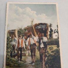 Postales: VENDIMIA PORTUGAL PINHAO. Lote 194393720