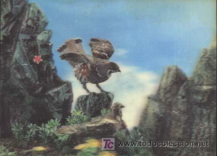 POSTAL EN 3D ( TRIDIMENSIONAL ) - AÑOS 60/70 - AGUILUCHO (Postales - Postales Temáticas - Especiales)