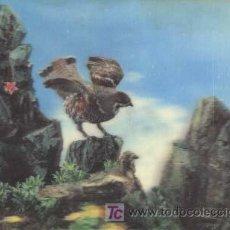 Postales: POSTAL EN 3D ( TRIDIMENSIONAL ) - AÑOS 60/70 - AGUILUCHO. Lote 194716982