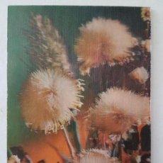 Postales: POSTAL 3D. Lote 197436011