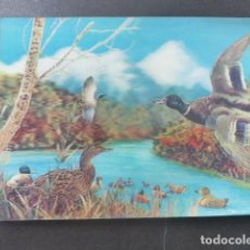 Postales: PATOS POSTAL 3D 3 DIMENSIONES. Lote 199272318