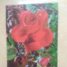 Postales: POSTAL ROSA 3D. Lote 207073680