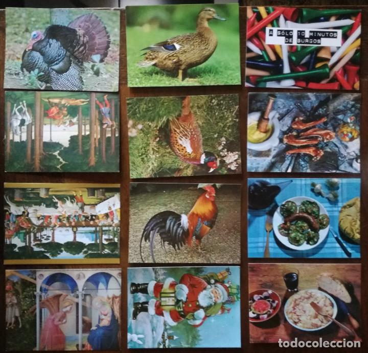 Postales: LOTE MAS DE 80 POSTALES NUEVAS VARIADAS VED FOTOGRAFÍAS - Foto 5 - 220266562