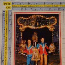 Postales: POSTAL DE CIRCO. CIRCO PROBST ALEMANIA. ADIESTRADORES DE MONOS.1098. Lote 222501146