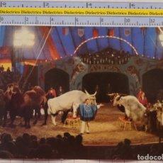 Postales: POSTAL DE CIRCO. ADIESTRADOR ANIMALES AERO. ANTIGUA DDR. 1111. Lote 222501848
