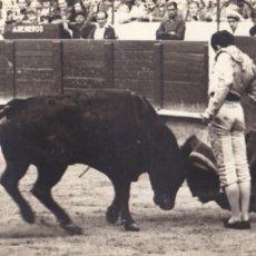 Postales: MATADOR DE TOROS, TORERO MANOLETE. FOTO GONSANHI BARCELONA. Lote 234725565