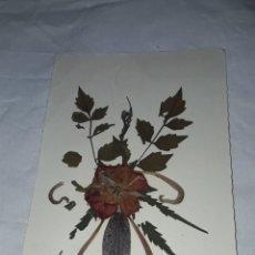 Postales: BELLA POSTAL DE FLORES SECAS NATURALES BALMES 1977. Lote 259947910