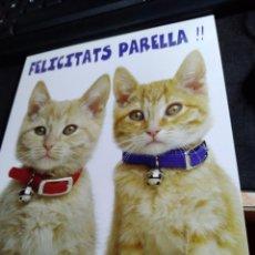 Postales: FELICITACIÓN * FELICITATS PARELLA !! .* DÍPTIC NOVA. Lote 296792283