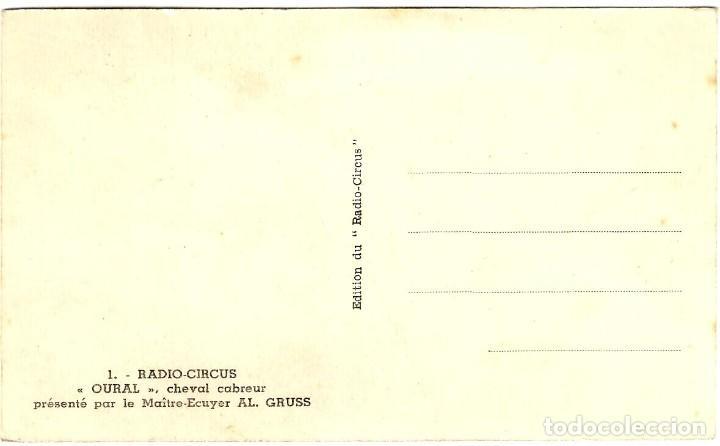Postales: Radio Circus - Oural, cheval cabreur - Tema: Circo - 140x90 mm. - Inédita en Todocolección - Foto 2 - 278455173