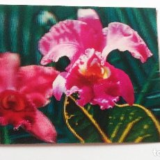 Postales: POSTAL 3D - FLOR ORQUIDEA - TOPPAN. Lote 296628508