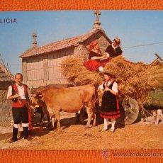Postales: GALICIA, CAMIÑO DE EIRA . Lote 13207580