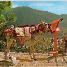 Postales: POSTAL A COLOR 273 ESPAÑA TIPICA ED MONTERO. Lote 21674817