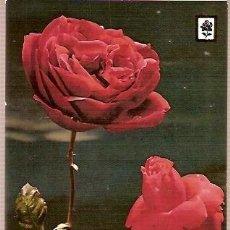 Postales: POSTAL A COLOR SERIE A Nº 10 COLECCION FLORES ESCUDO DE ORO ESCRITA 1967 FLORS. Lote 27937174