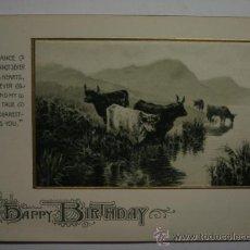Postales: 138 PRECIOSA POSTAL FELICITACION AÑOS 1900/20. Lote 28242250