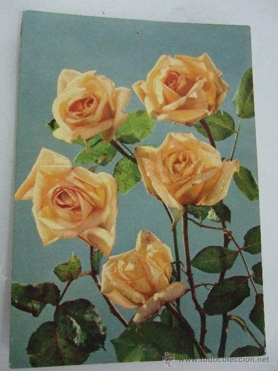 Postal Circulada Holanda 1962 Rosas Amarill Buy Old Style