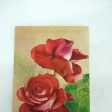 Postales: POSTAL CIRCULADA HOLANDA - ROSAS ROSAS - BORDES DENADOS. Lote 31186044