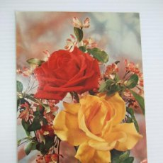 Postales: POSTAL ROSAS - 1972 - SIN CIRCULAR. Lote 36893153