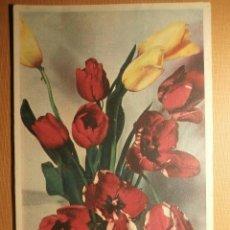 Postales: POSTAL - 0915C - EDICIONES CECAMI 1054 -ITALIA - ESCRITA EN 1952 - . Lote 43245392