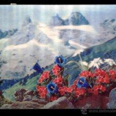 Postales: PK-92 - ALPINE PLANTS. PLANTAS ALPINAS - CIRCULADA 1971.. Lote 48604010