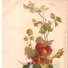 Cartoline: POSTAL ANTIGUA MOTIVOS FLORALES, POSTAL DIBUJADA, FRANCIA, SIN DIVIDIR, SIN CIRCULAR. Lote 124287855
