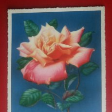 Postales: BONITA POSTAL ALEMANA ROSA FLOR. Lote 129235254