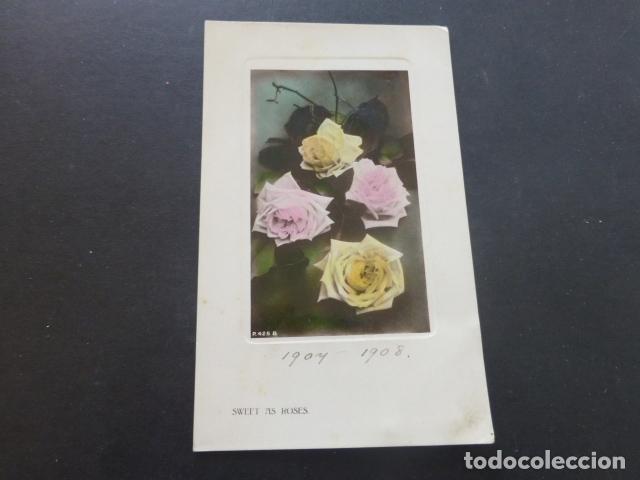 ROSAS POSTAL 1908 (Postales - Postales Temáticas - Estilo)