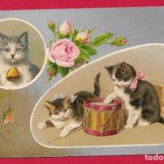 Postales: AB85 GATOS GATO GATITOS DIBUJADOS MUSICA TAMBOR FLORES ROSAS. Lote 190616227